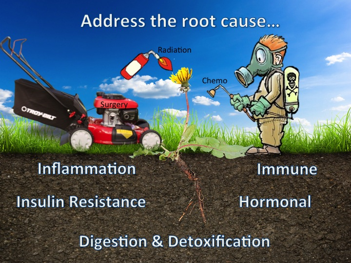 Cancer_Root Cause